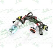 Лампы ксеноновые (пара)   H11 (12V 35W DC AMP)   5000K