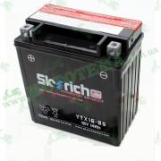 Аккумулятор Skyrich YTX16-BS 12V 14 Ah 150*87*161 (JS250ATV-5)