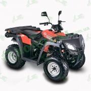 Квадроцикл SkyBike EXPERT-250 229,6 см.куб (кардан)