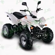 Квадроцикл SkyBike STINGER-150 149,6 см.куб