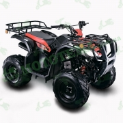 Квадроцикл SkyBike TRITON-150 149,6 см.куб