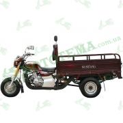 Трицикл грузовой (мотороллер, муравей) MUSSTANG MT200ZH-4V