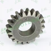 Шестерня заводной лапки (кикстартера) GY6 125-150cc