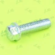 Болт М6х22 (лапки кик-стартера, натяжителя цепи распредвала, маслонасоса) 50-80cc 4T FADA