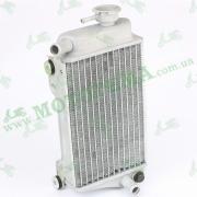Радиатор охлаждения (правый)  --  DAKAR 250 - 4V 2012