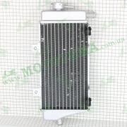 Радиатор охлаждения (правый) с кроншт. под вентилятор --  DAKAR 250 - 4V 2012