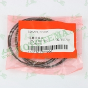 Поршневые кольца комплект 163FML CGP200 Loncin LX200GY-3 Pruss 130070139-0001