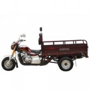 MT200-4V (трицикл-грузовой)