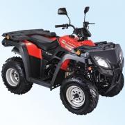 QINGQI Expert 250 ATV
