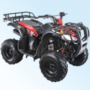 QINGQI Triton 150 ATV