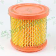Элемент воздушного фильтра Shineray XY250GY-6B